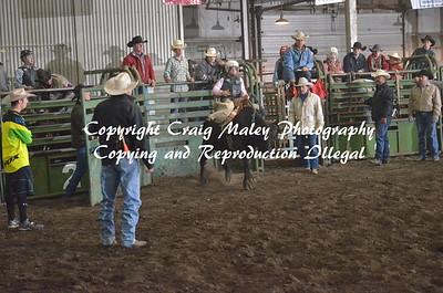 Steers Saddle Bronc 04-25-15
