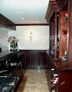 JR Wegman-Finished Basements(traditional & modern bars, in-home gym, fireplace, entertainment center, stairway & column, curved wall, sauna, bathroom)