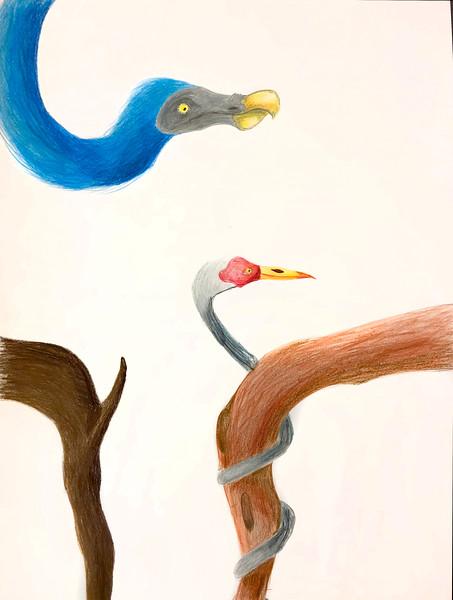 Wyatt_Taitt_spa_8the_birds.jpg
