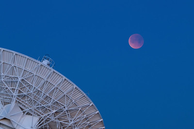 Lunar Eclipse at the VLA