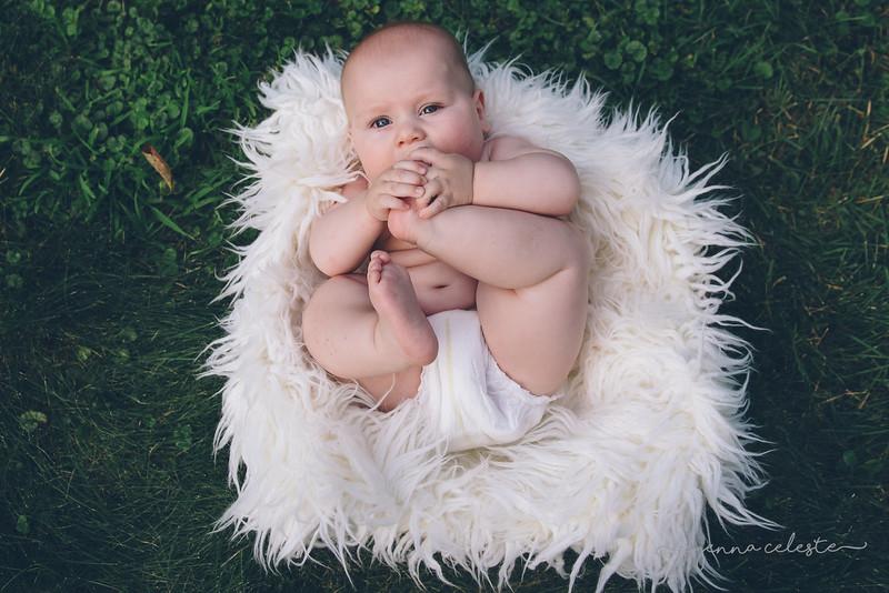 wm Mac Anderson 6 month infant newborn fresh48 northfield faribault owatonna minneapolis st paul infant baby birth newborn photography photographer-37.jpg