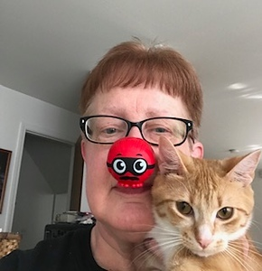 2019 Red Nose Challenge