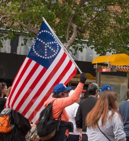 March Peace Flagl Deb Hoag-6321.jpg