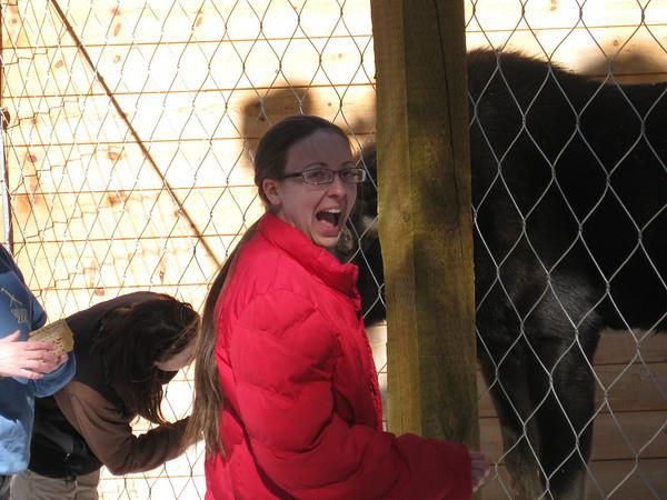 Cheyenne Mountain Zoo, February 23, 2010