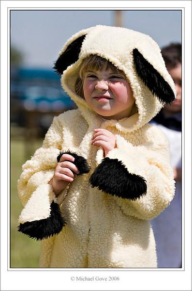 Sheep (61622874).jpg