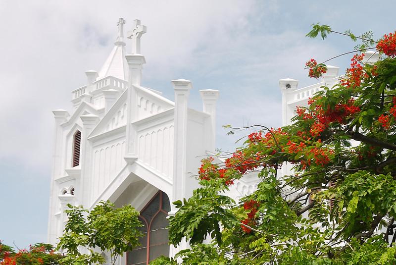 Key West Sightseeing-25.jpg