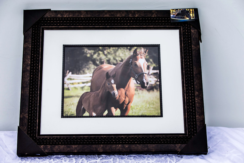 Item #1 Framed Horse Print