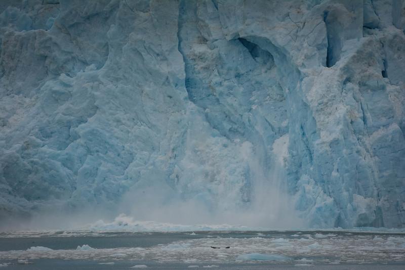 Kenai-Fjords-123.jpg