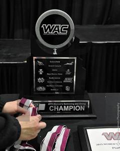 WAC 2015 S&D Championship Day4
