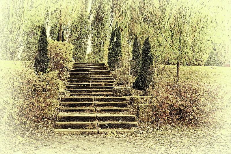 Park Steps Tea Green.jpg
