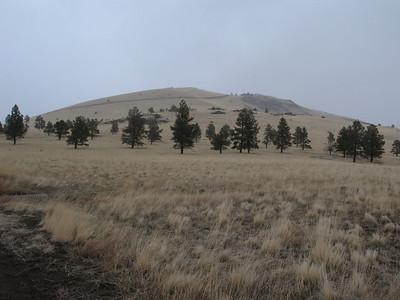 Pole Knoll & Antelope Mtn - Apr. 9, 2011