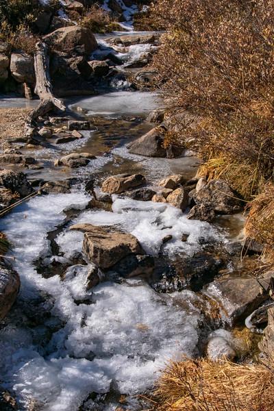 Ice on Lamoille Creek
