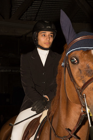 Washington International Horse Show (2014)
