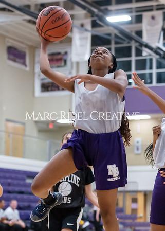 Broughton girls basketball vs Wake Forest. November 14, 2019. D4S_0183