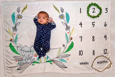 2 Month Old
