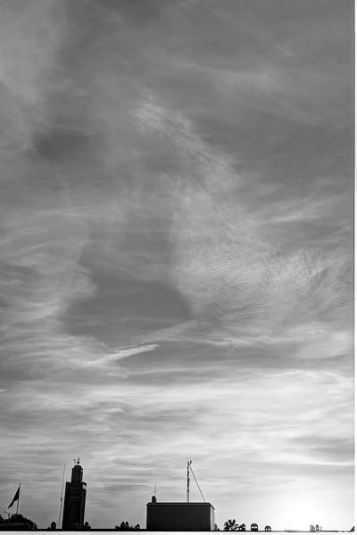2120161021-ILCE-7RM2-20161021-DSC04089_90_91_92_93B&W_Natural-122.jpg