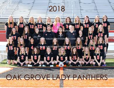 2018 OGHS Girls Soccer