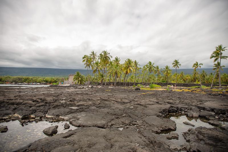 Hawaii2019-367.jpg