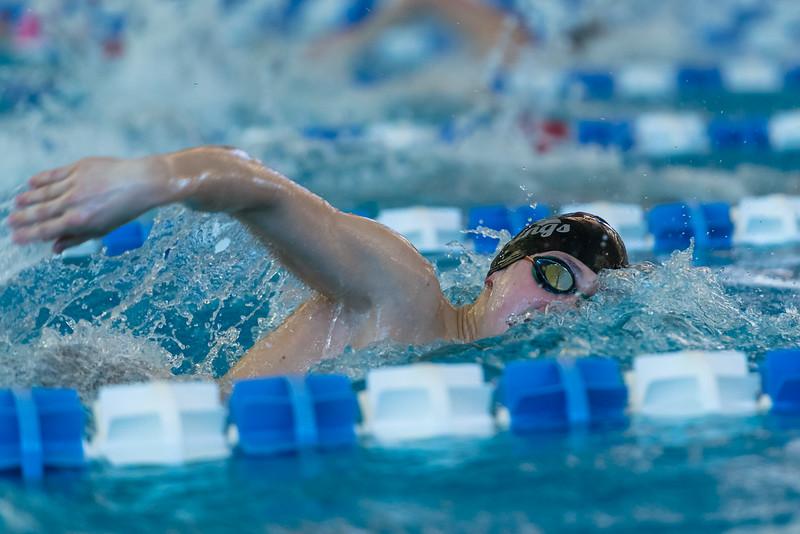 2018_KSMetz_Feb17_SHS Swimming_ State Finals_NIKON D5_5551.jpg