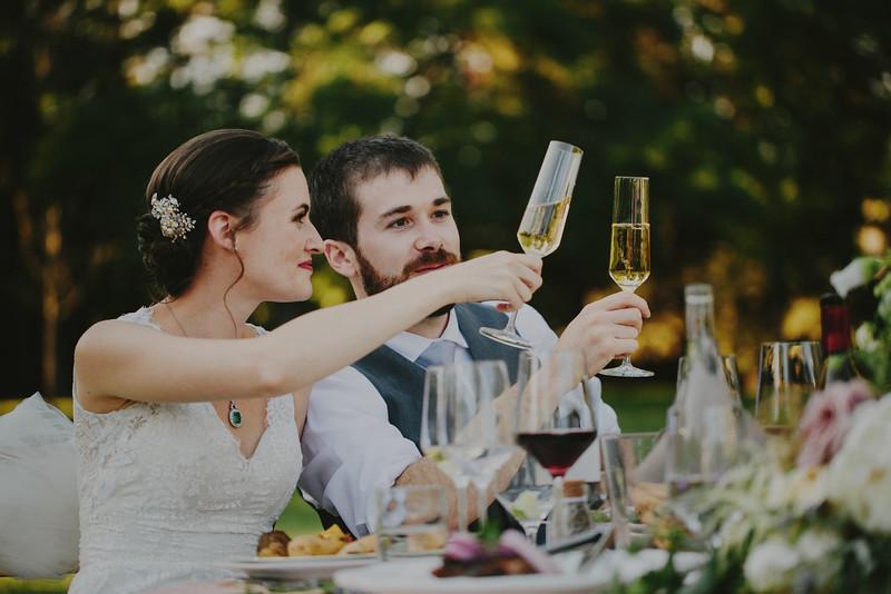 Julia and Pat's Vineyard Wedding-62.JPG