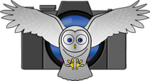 Flying-Owl-Vector-SLIM--Small.png