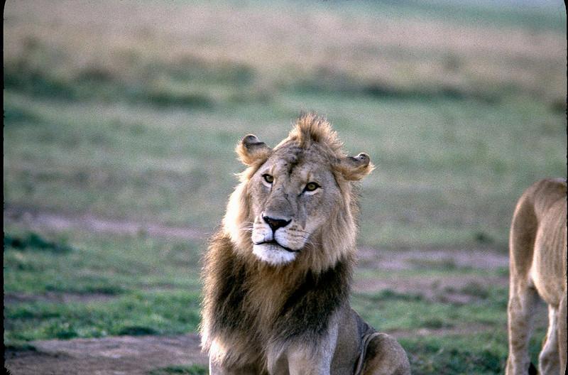 Kenya2_025.jpg