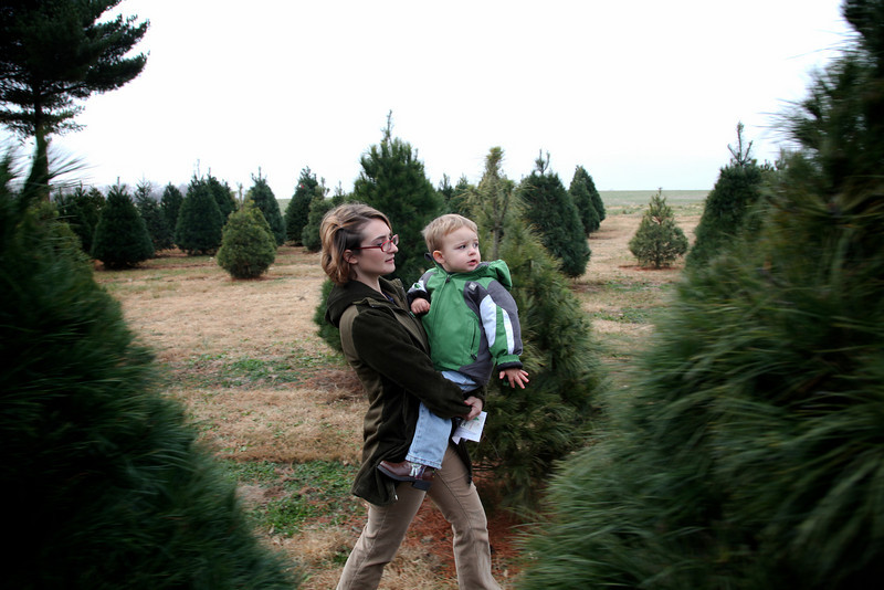 The family and picked out and tagged our Christmas tree at Gilmore's Tree Farm in Mattoon, Illinois on Saturday, November 20, 2010.  (Jay Grabiec)