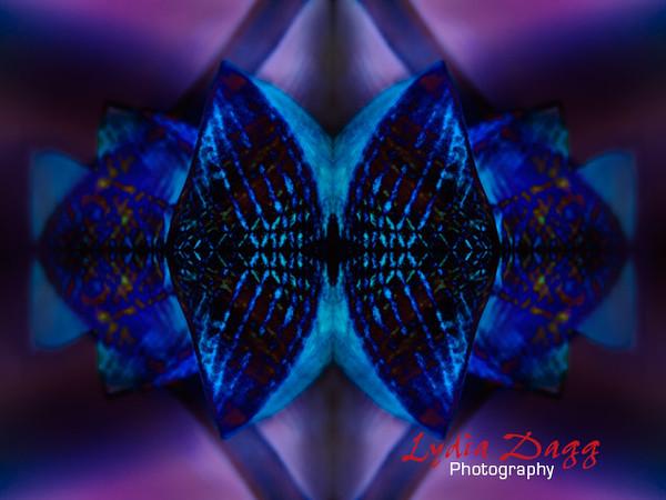 Harmonious Fusions, Mauve, #9922