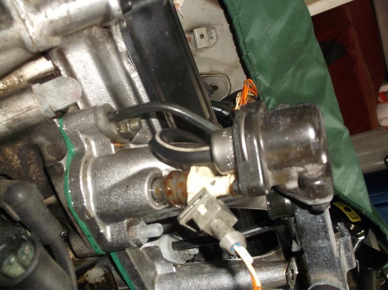 DSCF3864.JPG