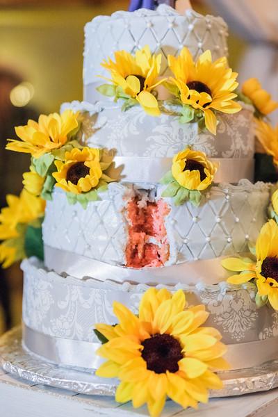 ELP0224 Sarah & Jesse Groveland wedding 3623.jpg