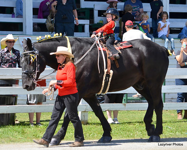 10 Friday, August 23, 2013 Lead line Draft Horse