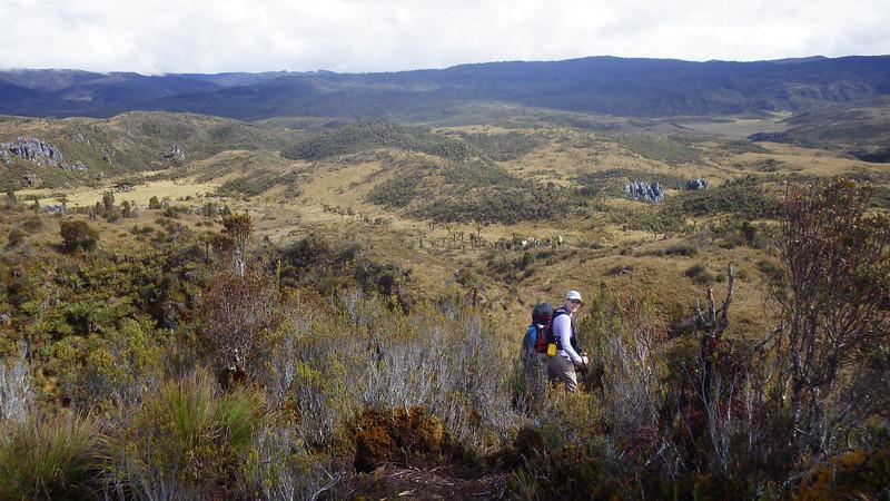 Papua savanna 2