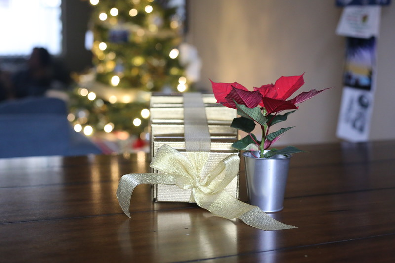2019-12-22_ChristmasDecor-4420.JPG