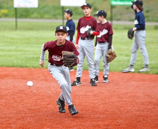 2014 Big Macs Baseball