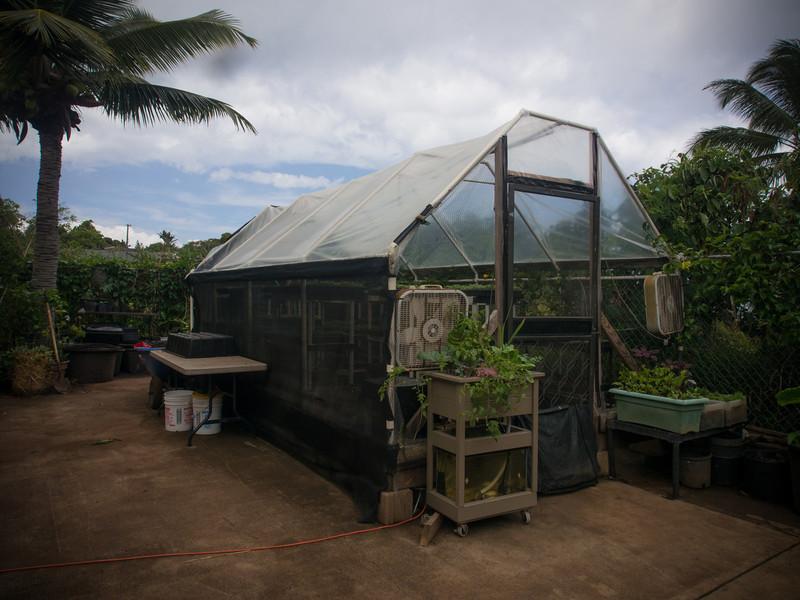 escargot greenhouse.jpg