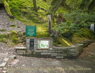 Dolgoch Ravine and Falls