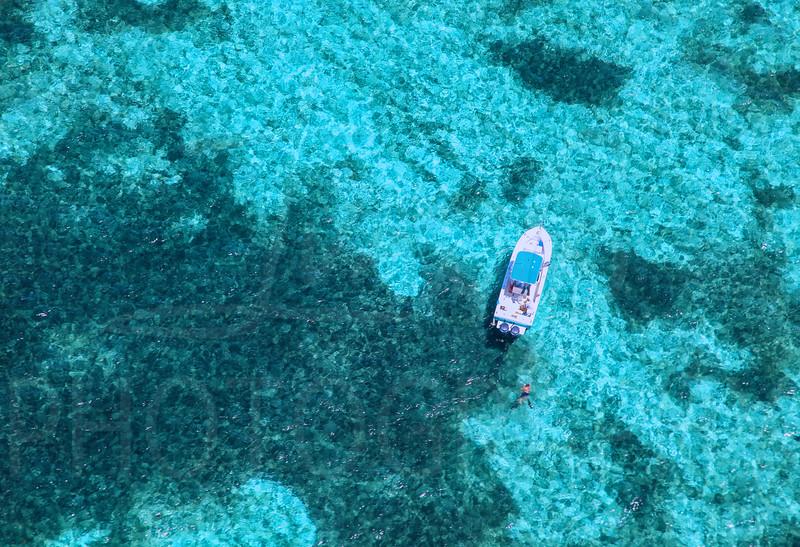 Bimini-Boat-Swimming-19x13.jpg
