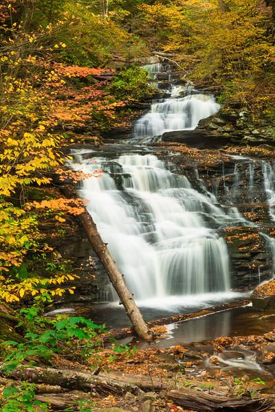 Mohican Falls Vertical Ricketts Glen State Park Waterfall Autumn.jpg