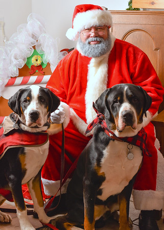 Pet Night with Santa 2019