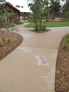 concrete path with embedded ant mosaic