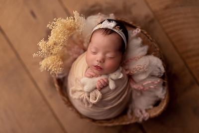 Selina • Newborn