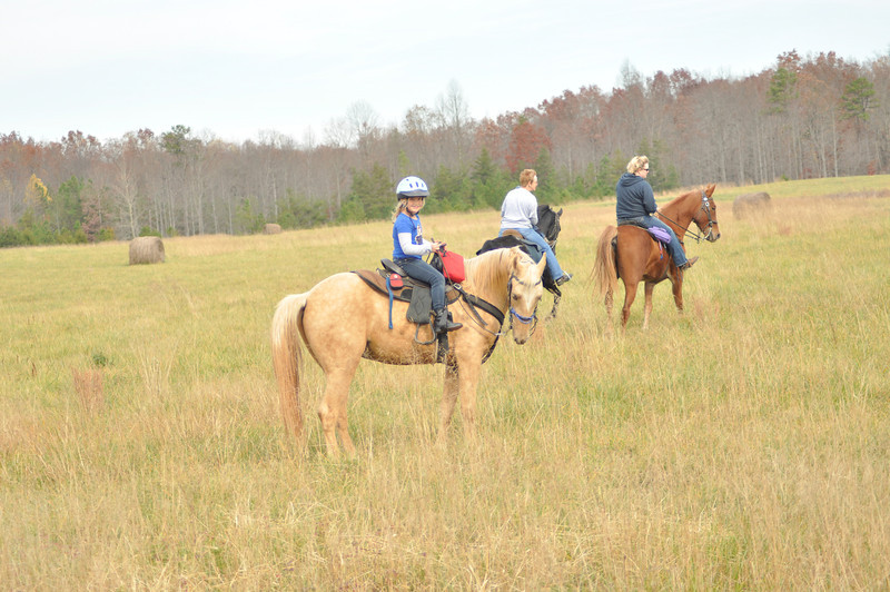 horse-riding-0130.jpg