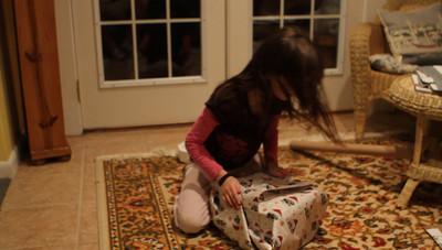 FV December 2010