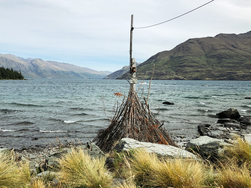 Trev-NZ-2019-18.jpg