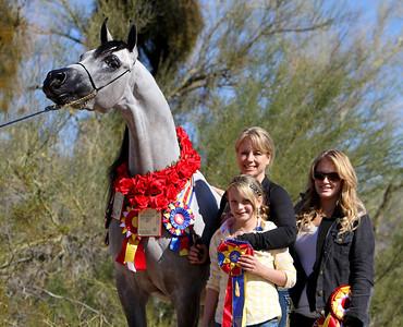 Acevedo Arabians