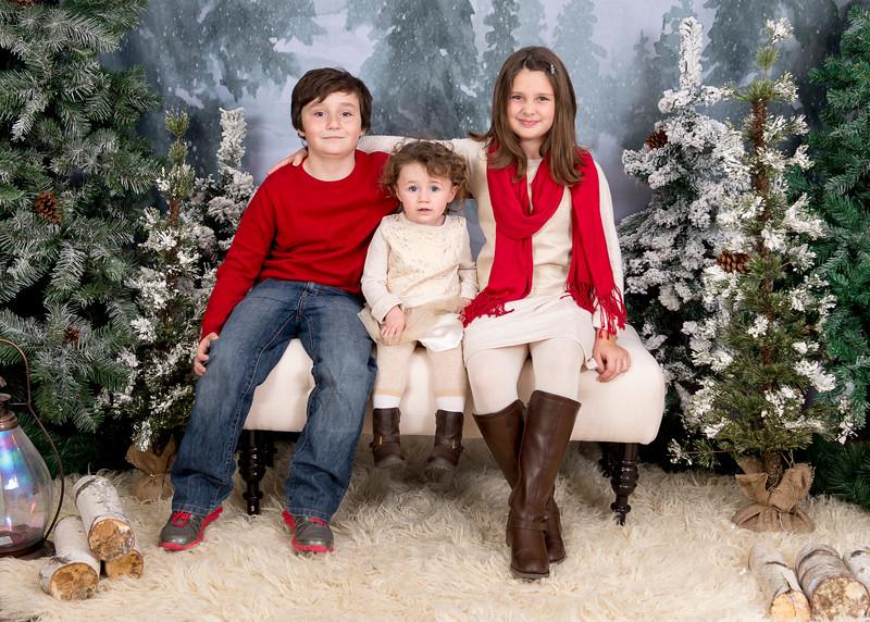 Kenney-HolidayMini2015-031.jpg