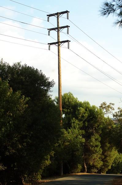 DebsPark043-RoadTreesAndTelephoneWires-2006-10-06.jpg