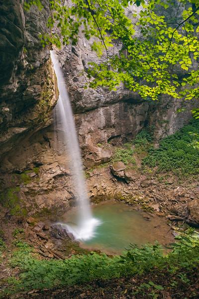 Nature X (15).jpg