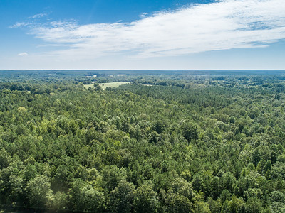 Wilkes County Georgia Landmart