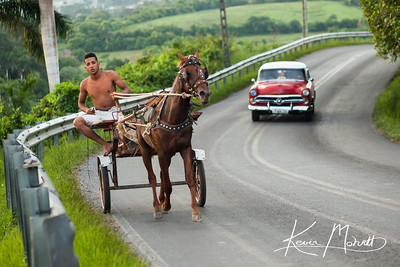 In Valle de Viñales, farming is one of the primary industries though unlike farming in the U.S., modern machinery like tractors, is scarce making it common to see horses and carts or oxen in the roadways.